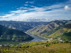 douro bike tour cycling view